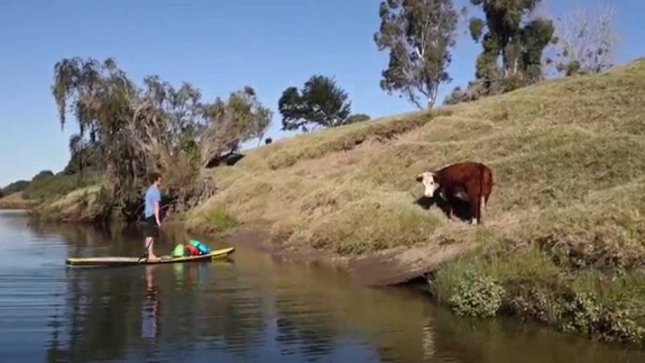 Beau Nixon's Clarence River SUP Trip