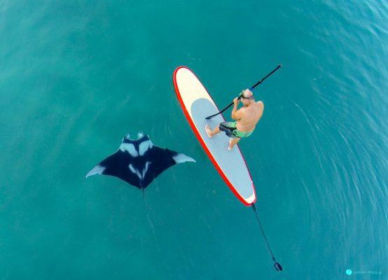 Manta Ray + SUP + Drone