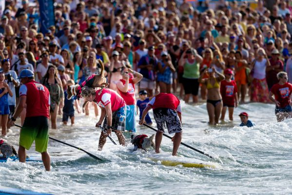 What Happened in the SUP World This Weekend