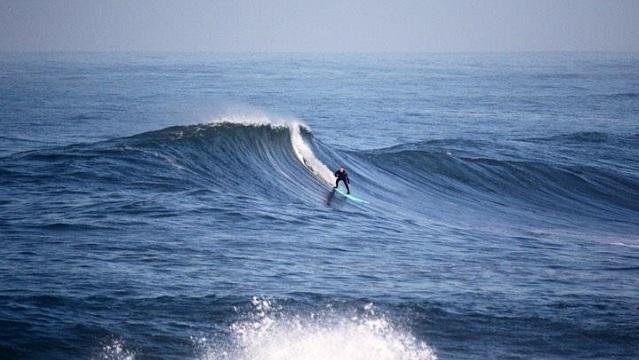 Leneil Surf