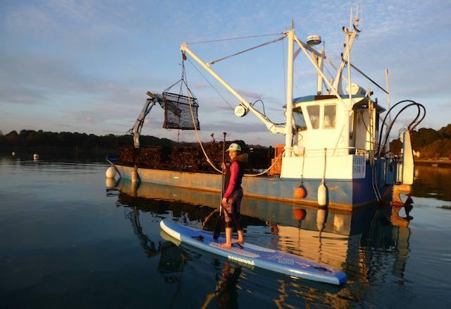 Le Morbihan en Paddle