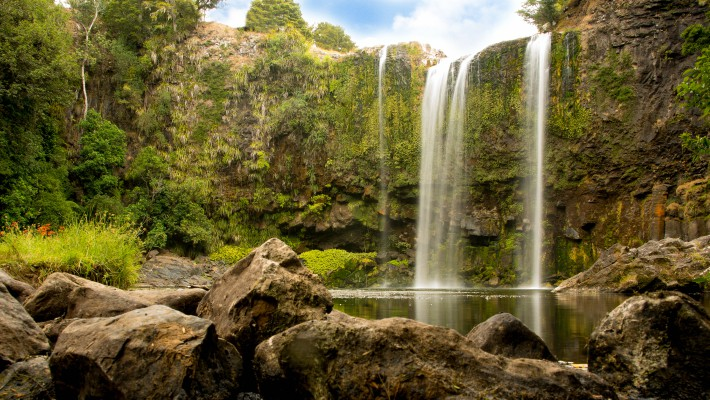 The famous Whangarei Falls, a major tourist attraction in the capital of the Northland Region, New Zealand