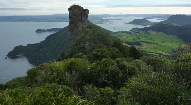 View from Whangarei Heads, New Zealand