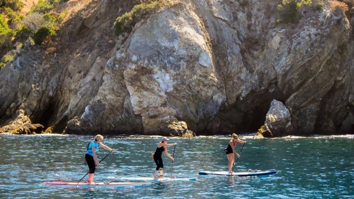 Visit beautiful Catalina with Performance Paddling