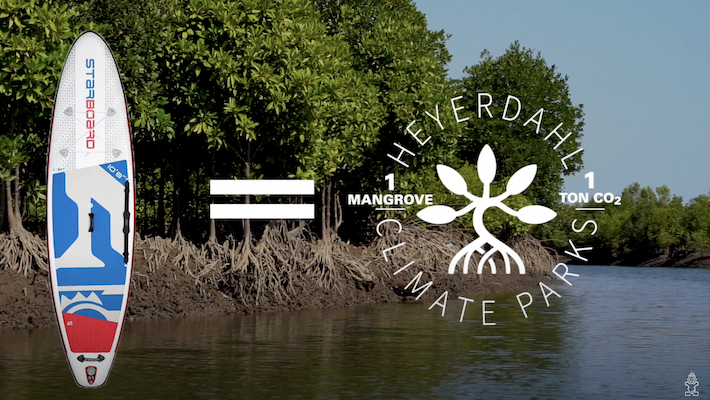 The Buy-a-Board / Plant-a-Mangrove Starboard Plan Explained