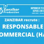 Zanzibar Production recrute : Responsable Commercial